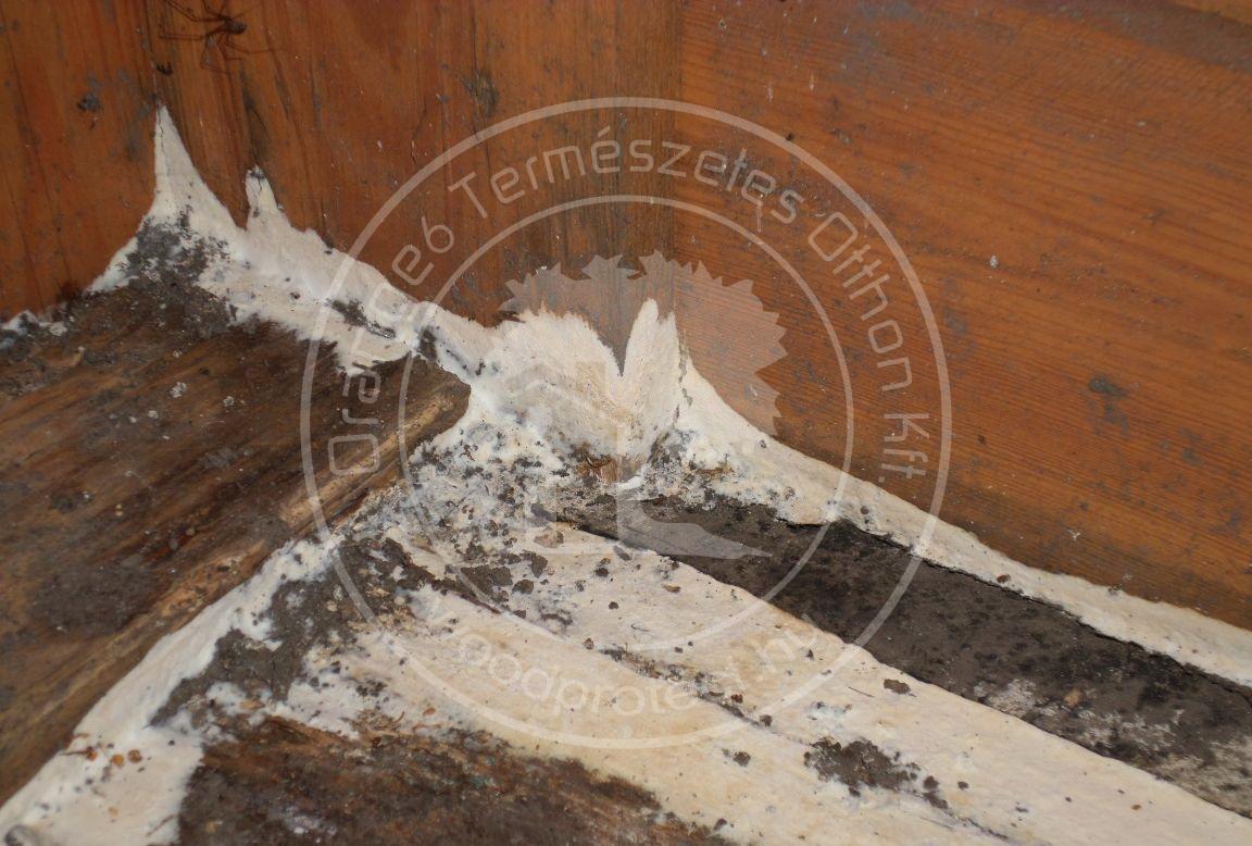 Gombakárosítás faház padozatán.